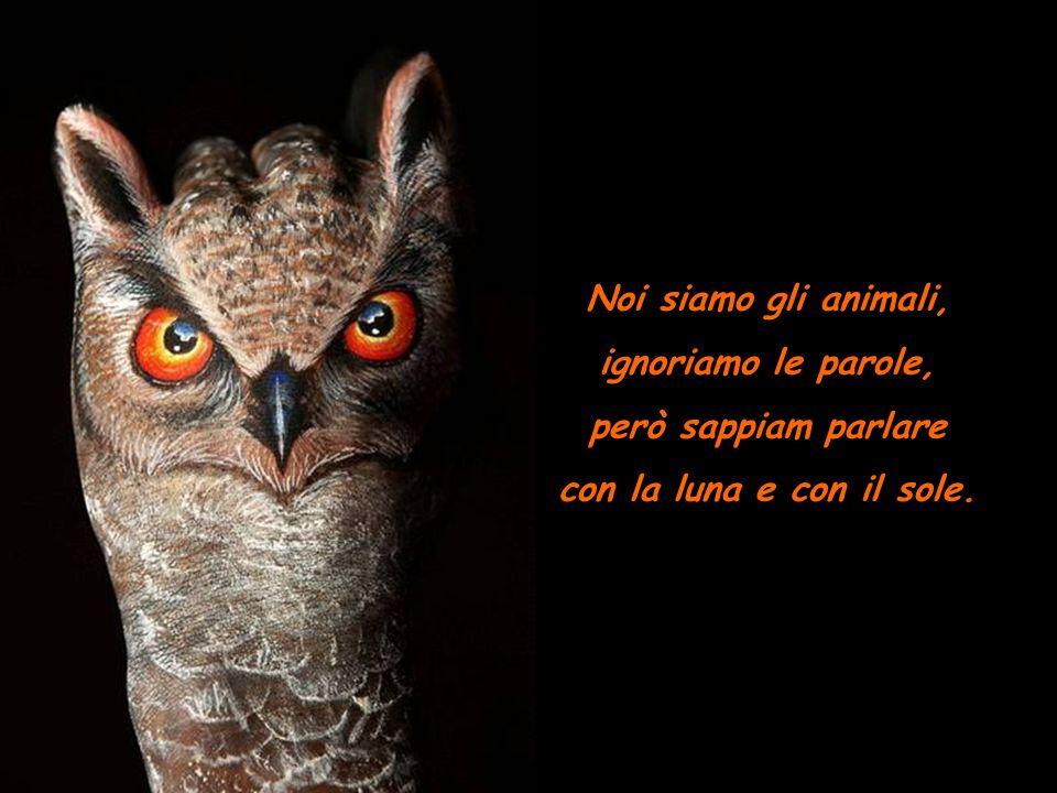 Noi siamo gli animali, non siamo intelligenti, però sappiamo cose che non vedi e che non senti.