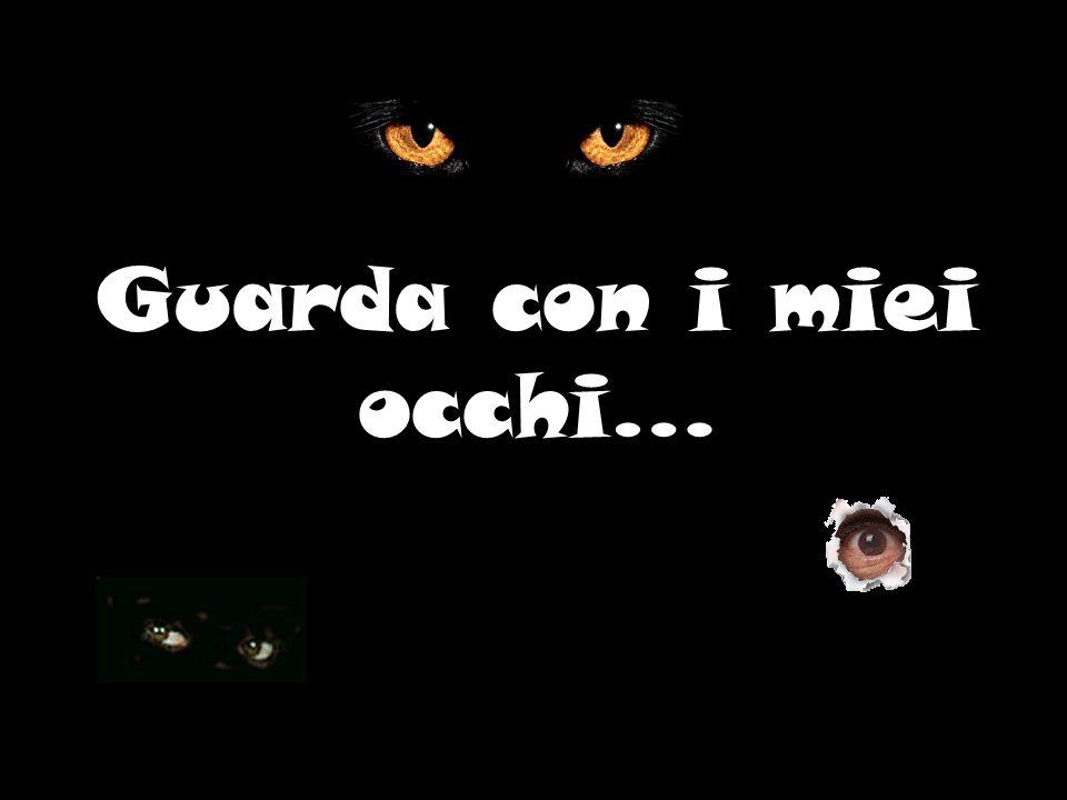 Guarda con i miei occhi…