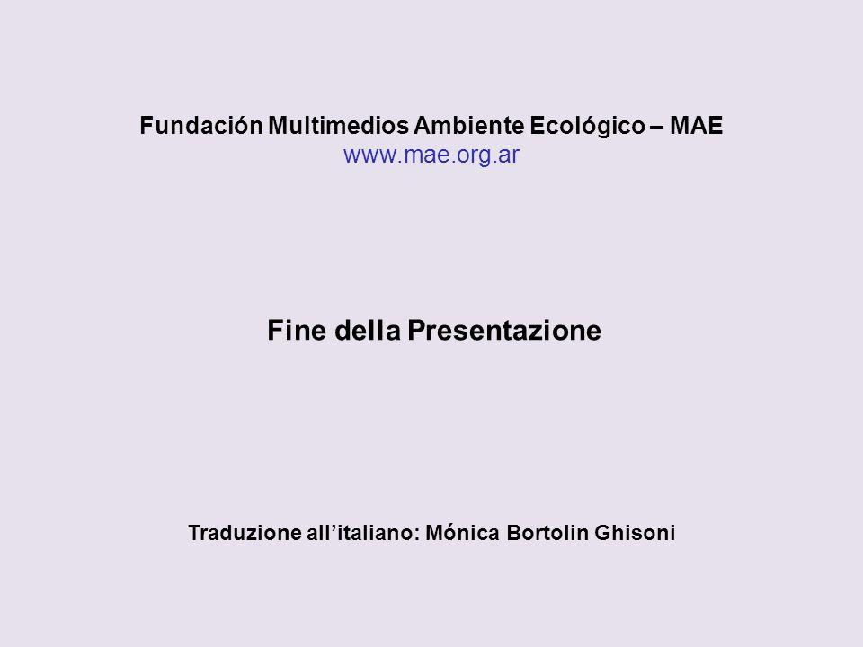Fundación Multimedios Ambiente Ecológico – MAE www.mae.org.ar Fine della Presentazione Traduzione allitaliano: Mónica Bortolin Ghisoni