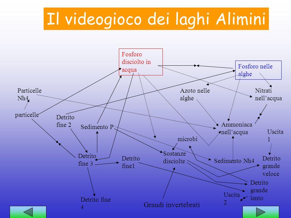Laghi Alimini=un videogioco Come ogni videogioco lecosistema dei laghi Alimini ha: -Uno scopo:reggere lequilibrio tra le specie che lo compongono. -De