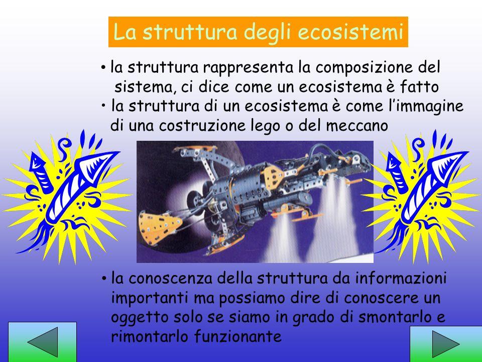 Un approccio di studio la struttura degli ecosistemi attraverso….. le costruzioni Lego ed il meccano... le funzioni degli ecosistemi ed….. il difficil