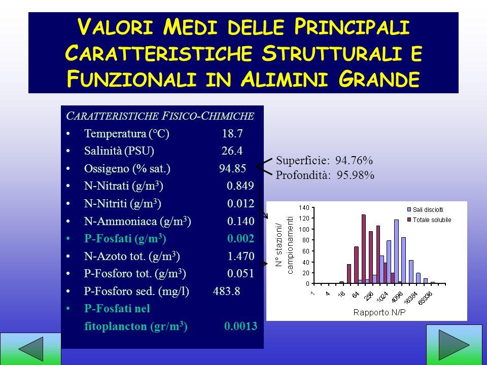 Alcune caratteristiche della struttura di Alimini grande DIVIETO DI CACCIA!!!!