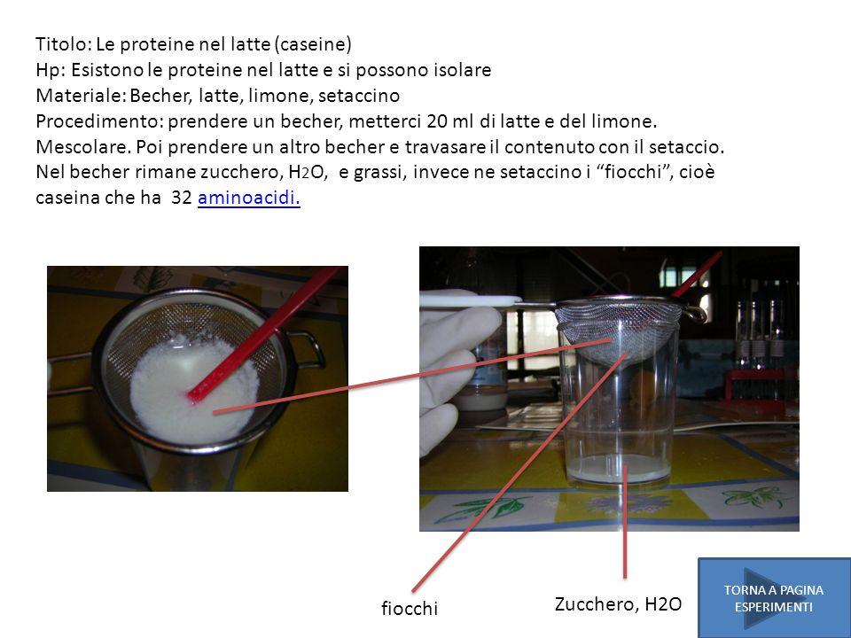Titolo: Le proteine nel latte (caseine) Hp: Esistono le proteine nel latte e si possono isolare Materiale: Becher, latte, limone, setaccino Procedimen