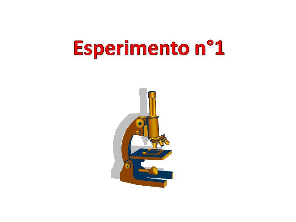 Titolo: Analisi del PH nellacqua del rubinetto di scuola Materiale: H2O del rubinetto, H2O demineralizzata, aceto, cartina tornasole, contagocce. Il P