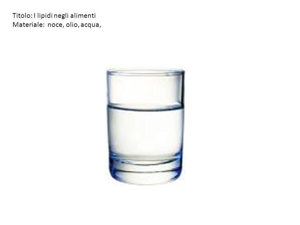 Titolo: I lipidi negli alimenti Materiale: noce, olio