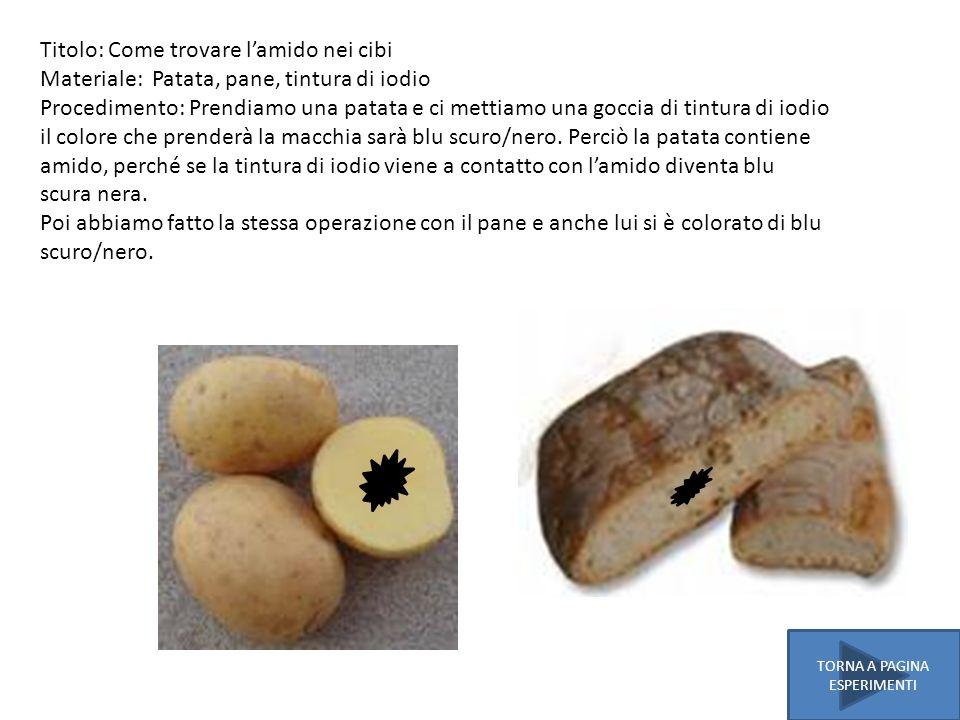 Titolo: Come trovare lamido nei cibi Materiale: Patata, pane, tintura di iodio