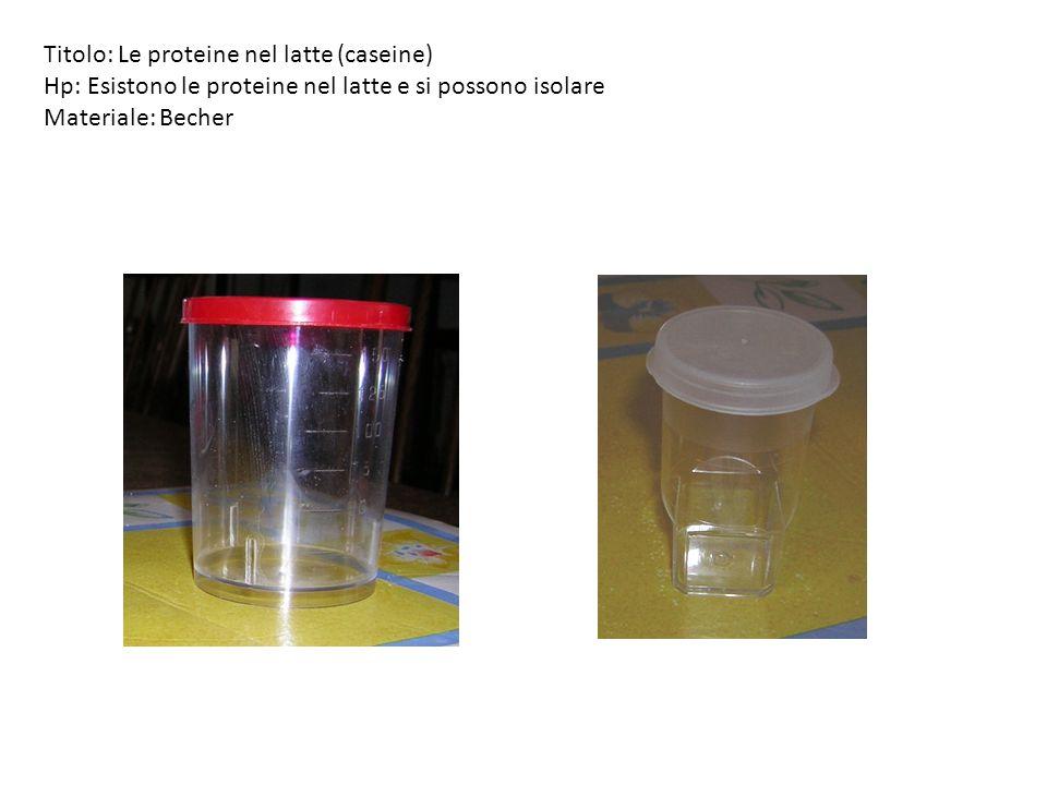 Titolo: Le proteine nel latte (caseine) Hp: Esistono le proteine nel latte e si possono isolare