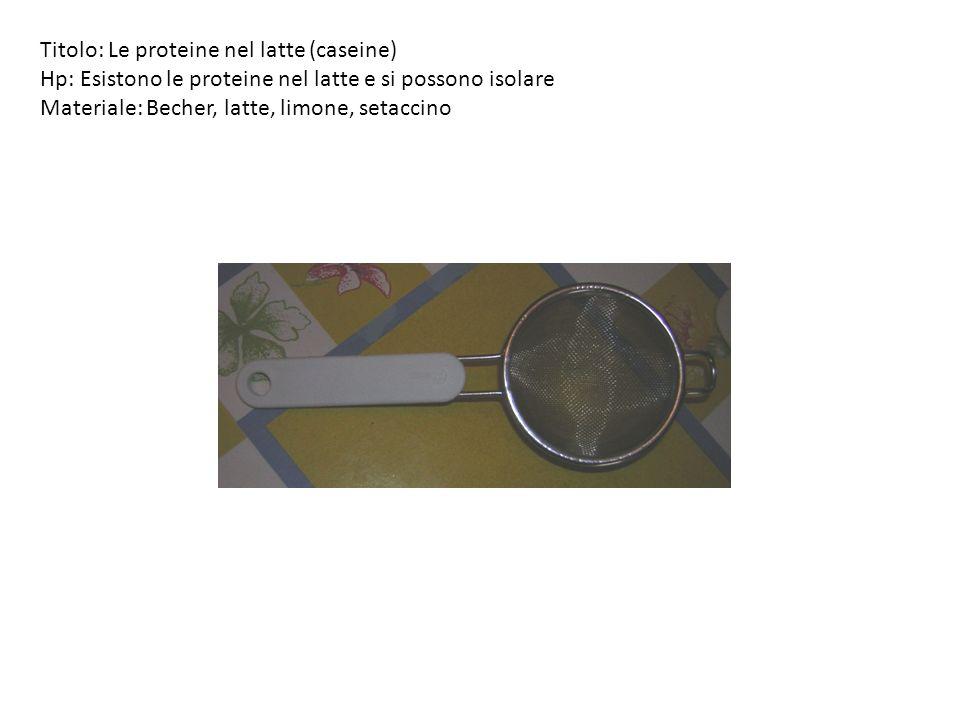 Titolo: Le proteine nel latte (caseine) Hp: Esistono le proteine nel latte e si possono isolare Materiale: Becher, latte, limone