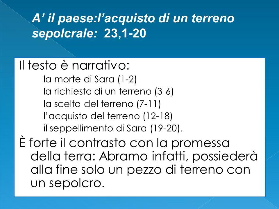 Il testo è narrativo: la morte di Sara (1-2) la richiesta di un terreno (3-6) la scelta del terreno (7-11) lacquisto del terreno (12-18) il seppellime