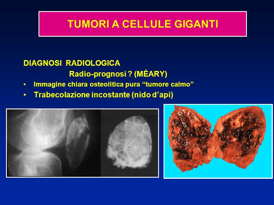 DIAGNOSI RADIOLOGICA Radio-prognosi ? (MÉARY) Immagine chiara osteolitica pura tumore calmo Trabecolazione incostante (nido dapi) TUMORI A CELLULE GIG