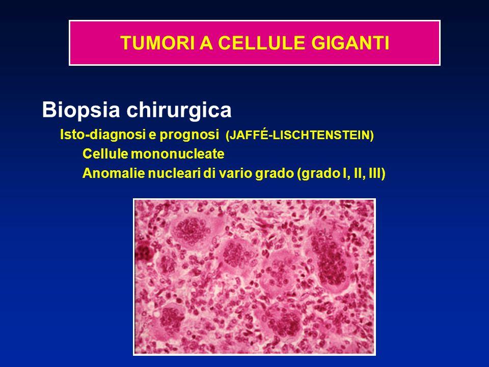 Biopsia chirurgica Isto-diagnosi e prognosi (JAFFÉ-LISCHTENSTEIN) Cellule mononucleate Anomalie nucleari di vario grado (grado I, II, III) TUMORI A CELLULE GIGANTI