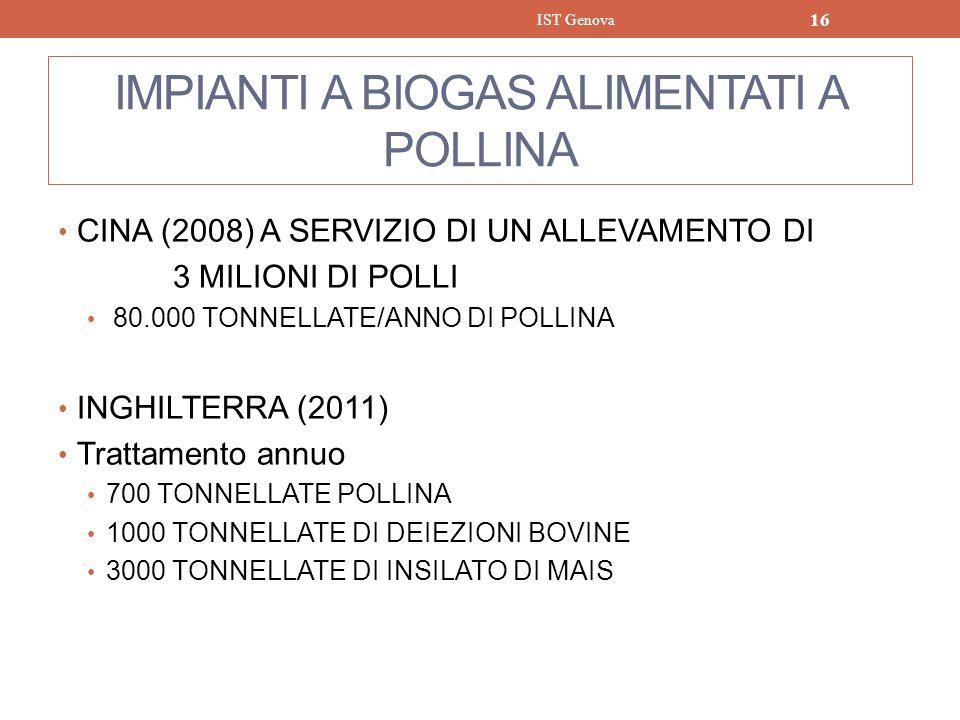 IMPIANTI A BIOGAS ALIMENTATI A POLLINA CINA (2008) A SERVIZIO DI UN ALLEVAMENTO DI 3 MILIONI DI POLLI 80.000 TONNELLATE/ANNO DI POLLINA INGHILTERRA (2