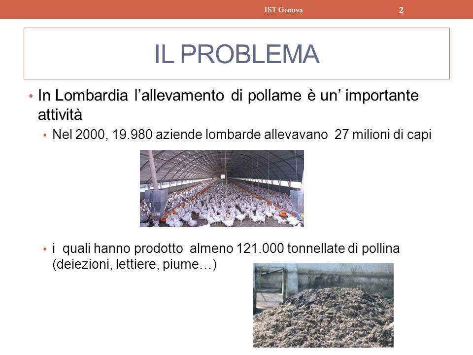 IL PROBLEMA In Lombardia lallevamento di pollame è un importante attività Nel 2000, 19.980 aziende lombarde allevavano 27 milioni di capi i quali hann