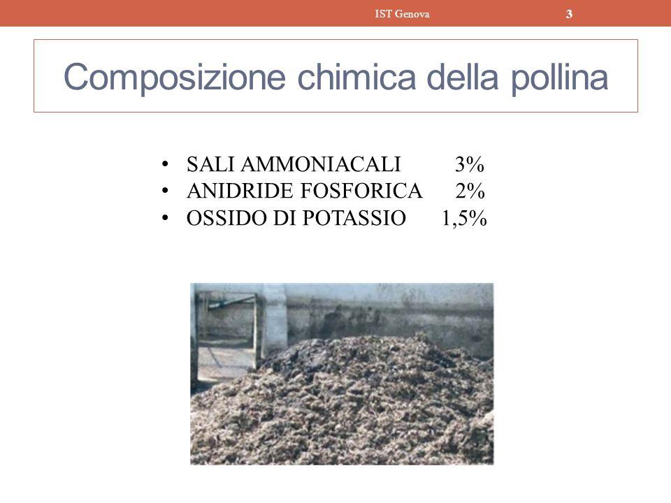 Inquinanti immessi in atmosfera dal gasificatore di Bedizzole dopo trattamento fumi INQUINANTI kg/anno Polveri 507 Ossidi di azoto 10.161 Anidride solforosa 5.080 IST Genova 24