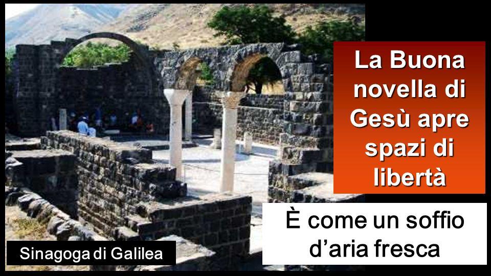 Gesù percorreva tutta la Galilea, insegnando nelle loro sinagoghe, annunciando il vangelo del Regno e guarendo ogni sorta di malattie e di infermità nel popolo.