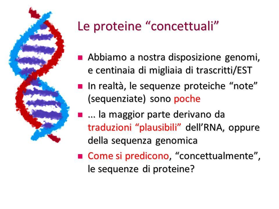 Le proteine concettuali Abbiamo a nostra disposizione genomi, e centinaia di migliaia di trascritti/EST Abbiamo a nostra disposizione genomi, e centin