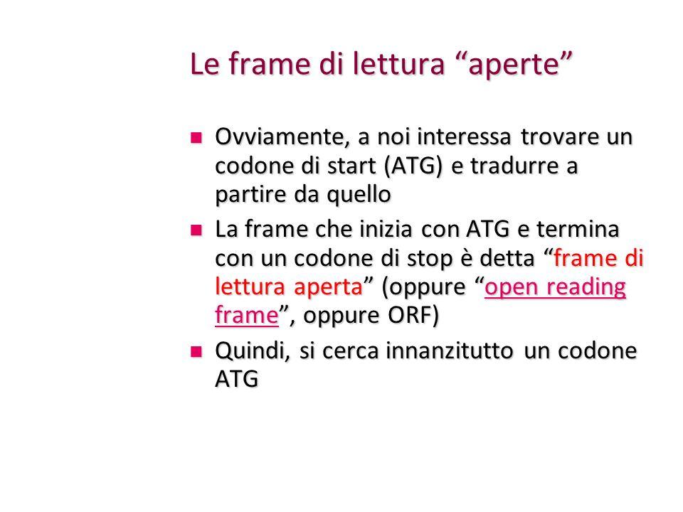 Le frame di lettura aperte Ovviamente, a noi interessa trovare un codone di start (ATG) e tradurre a partire da quello Ovviamente, a noi interessa tro