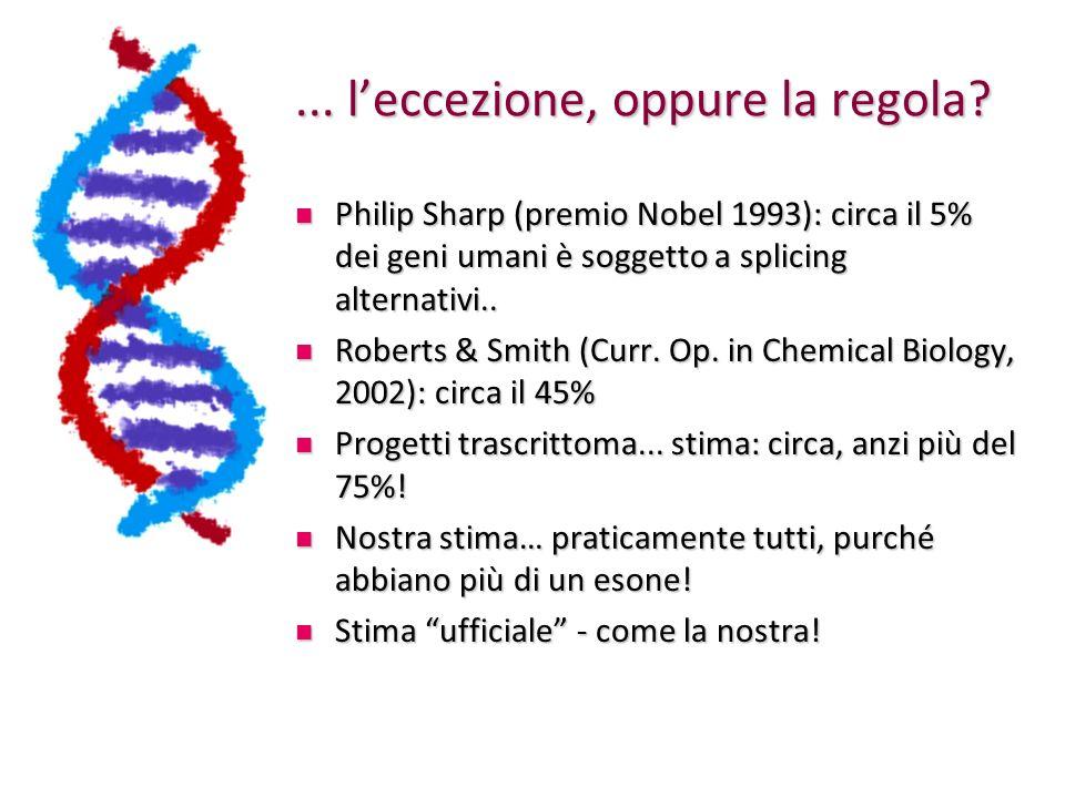 Definire gli splicing alternativi Avendo a disposizione sia la sequenza genomica che quella dei trascritti, mappando i differenti trascritti sulla sequenza genomica si osservano a colpo docchio le differenze Avendo a disposizione sia la sequenza genomica che quella dei trascritti, mappando i differenti trascritti sulla sequenza genomica si osservano a colpo docchio le differenze Mentre eventi sul primo (ultimo) esone probabilmente lasciano la proteina inalterata, eventi negli esoni interni cambieranno anche la sequenza codificante del trascritto maturo Mentre eventi sul primo (ultimo) esone probabilmente lasciano la proteina inalterata, eventi negli esoni interni cambieranno anche la sequenza codificante del trascritto maturo