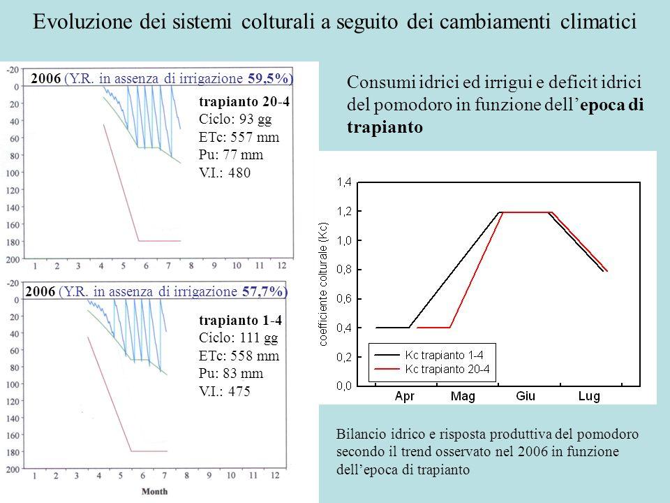 Bilancio idrico e risposta produttiva del pomodoro secondo il trend osservato nel 2006 in funzione dellepoca di trapianto Consumi idrici ed irrigui e