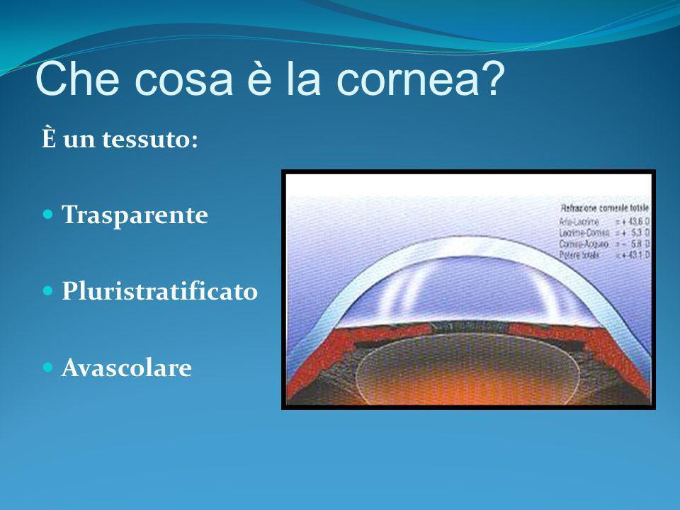 Che cosa è la cornea? È un tessuto: Trasparente Pluristratificato Avascolare