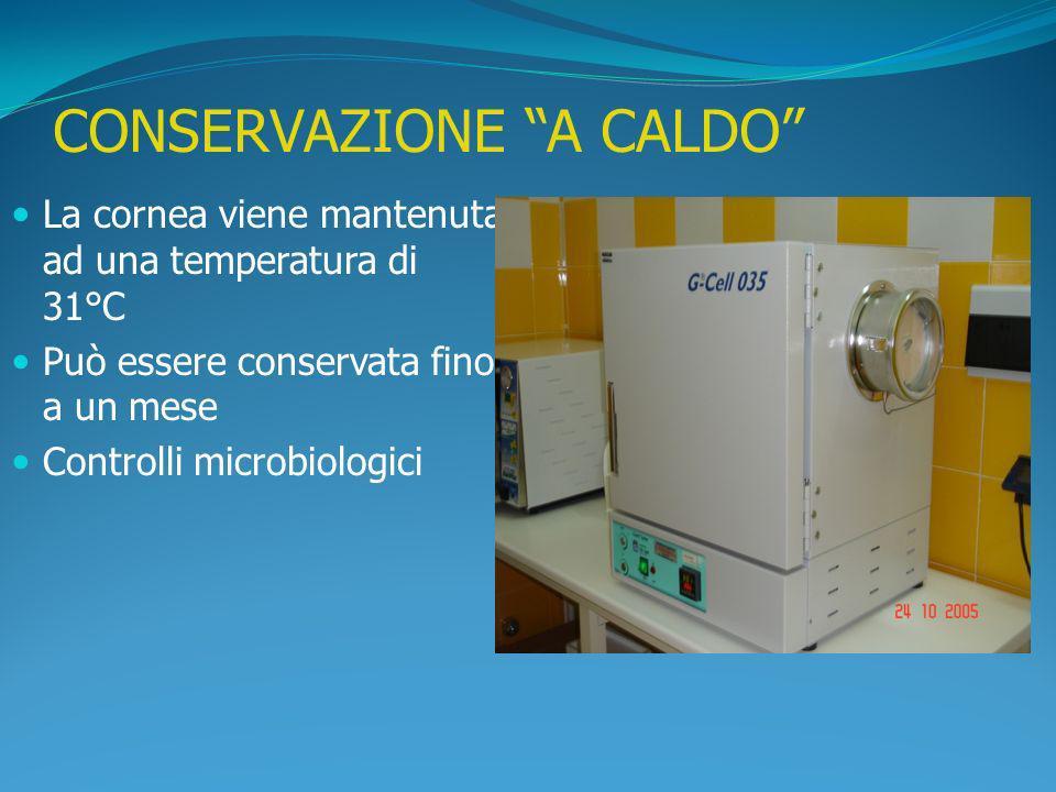 CONSERVAZIONE A CALDO La cornea viene mantenuta ad una temperatura di 31°C Può essere conservata fino a un mese Controlli microbiologici