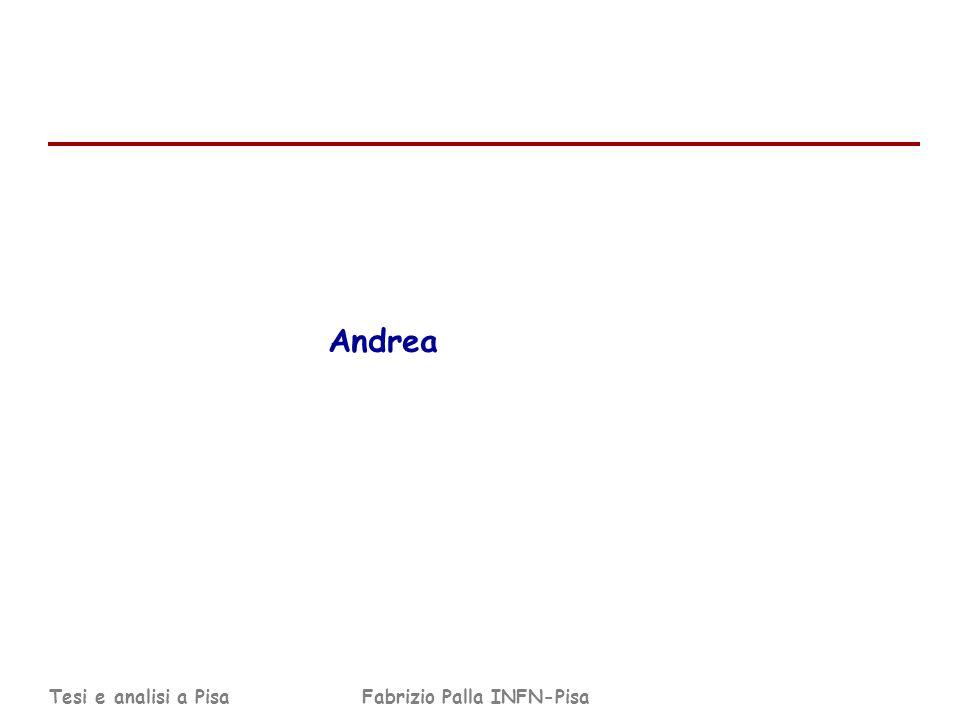 Tesi e analisi a PisaFabrizio Palla INFN-Pisa Andrea