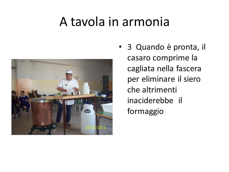 A tavola in armonia 3 Quando è pronta, il casaro comprime la cagliata nella fascera per eliminare il siero che altrimenti inaciderebbe il formaggio