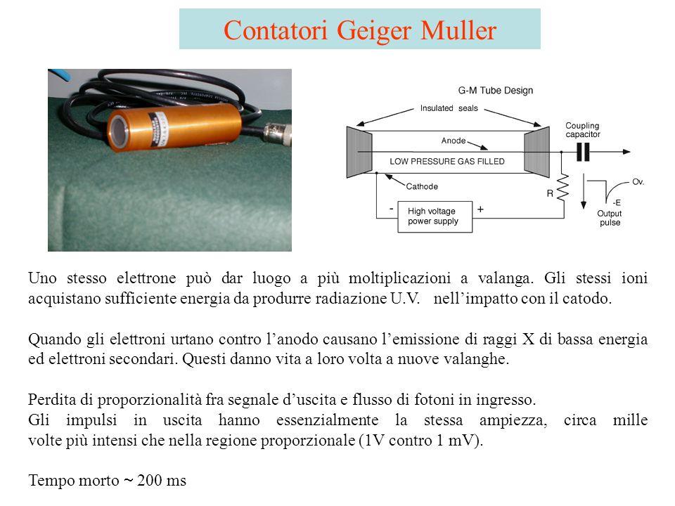 Contatori Geiger Muller Uno stesso elettrone può dar luogo a più moltiplicazioni a valanga. Gli stessi ioni acquistano sufficiente energia da produrre
