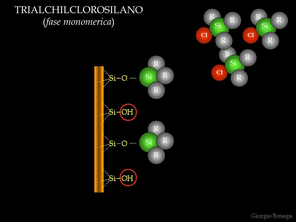 TRIALCHILCLOROSILANO ( fase monomerica ) Giorgio Bonaga R Cl Si R R R Cl Si R R R Cl Si R R R R R R R R