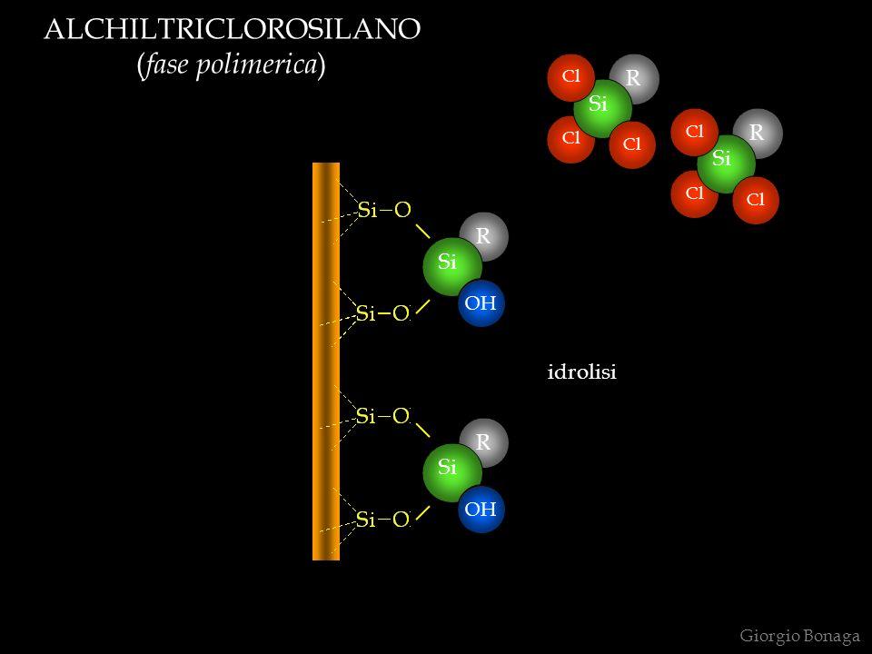 ALCHILTRICLOROSILANO ( fase polimerica ) Giorgio Bonaga R Cl Si Cl R Si Cl R Si Cl R Si Cl OH idrolisi