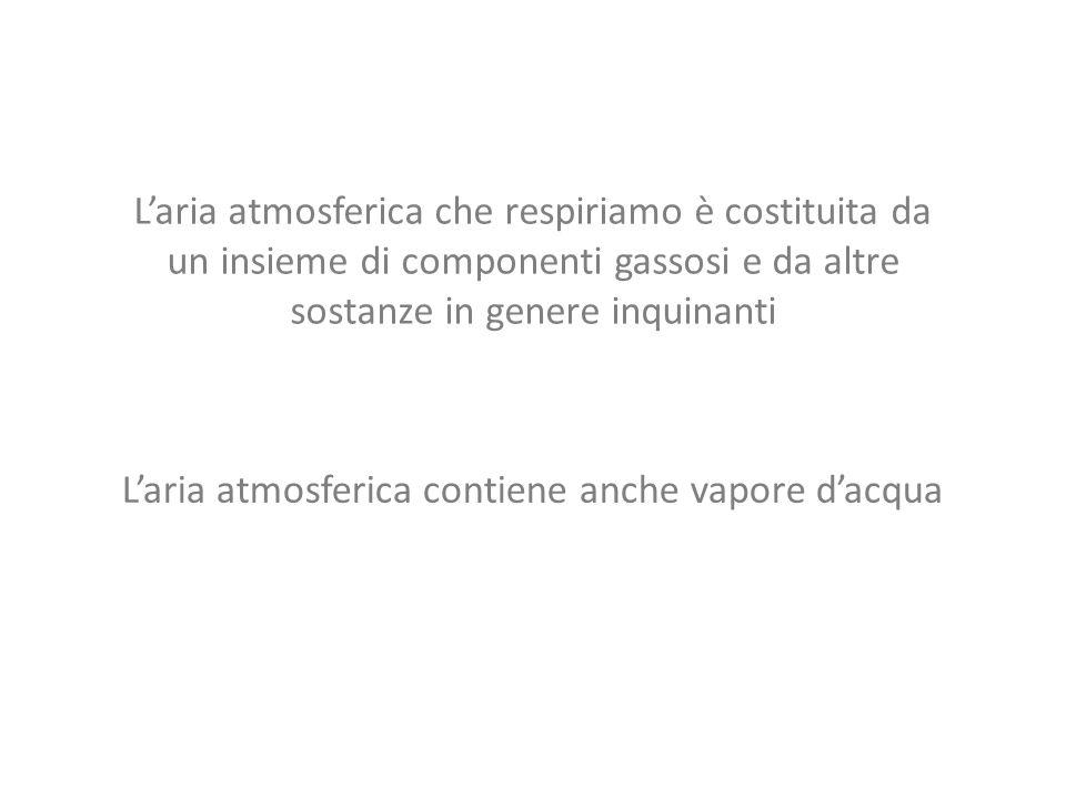 Laria che prendiamo in considerazione è una miscela binaria composta da: ARIA SECCA VAPOR DACQUA ARIA UMIDA + Il vapor dacqua presente nella miscela è ad una temperatura inferiore a quella critica, quindi a seconda della trasformazione subita dalla miscela può condensare.