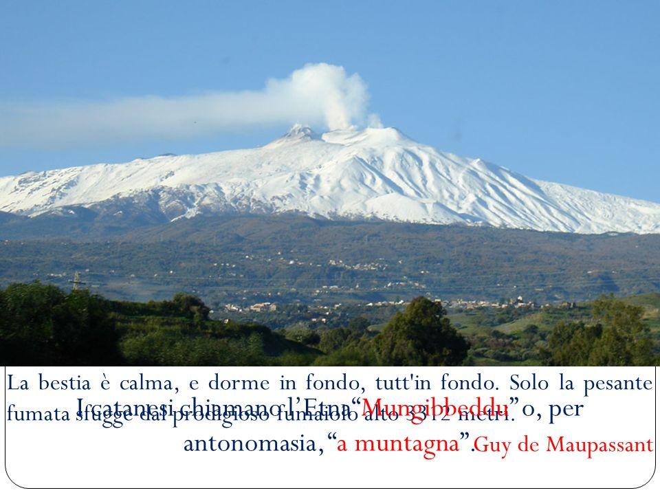 Le eruzioni dellEtna sono molto frequenti: mediamente LEtna erutta 17 volte lanno.