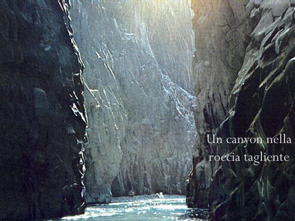 LEtna è delimitato -a est dal Mar Ionio -a nord dal fiume Alcantara -a ovest e a sud dal fiume Simeto Scorrendo nella pietra lavica eruttata dallEtna, lAlcantara scava delle spettacolari gole Lingresso delle gole Un canyon nella roccia tagliente