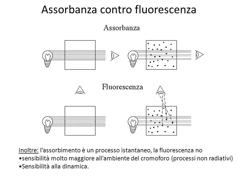 Assorbanza contro fluorescenza Inoltre: lassorbimento è un processo istantaneo, la fluorescenza no sensibilità molto maggiore allambiente del cromoforo (processi non radiativi) Sensibilità alla dinamica.