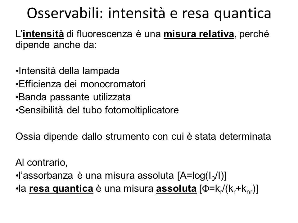 Osservabili: intensità e resa quantica Lintensità di fluorescenza è una misura relativa, perché dipende anche da: Intensità della lampada Efficienza dei monocromatori Banda passante utilizzata Sensibilità del tubo fotomoltiplicatore Ossia dipende dallo strumento con cui è stata determinata Al contrario, lassorbanza è una misura assoluta [A=log(I 0 /I)] la resa quantica è una misura assoluta [ =k r /(k r +k nr )]
