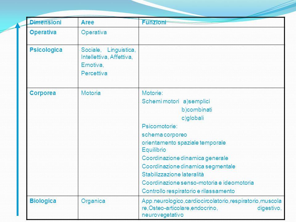DimensioniAreeFunzioni Operativa PsicologicaSociale, Linguistica, Intellettiva, Affettiva, Emotiva, Percettiva CorporeaMotoriaMotorie: Schemi motori a