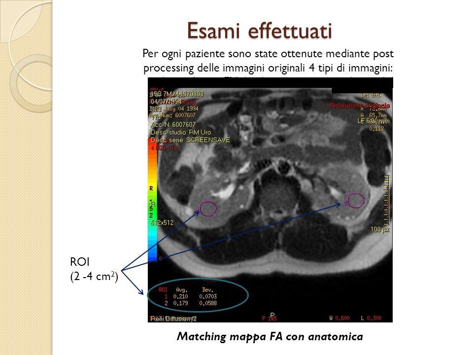 Esami effettuati Per ogni paziente sono state ottenute mediante post processing delle immagini originali 4 tipi di immagini: Matching mappa FA con ana