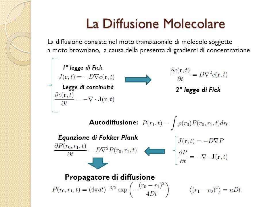 La Diffusione Molecolare La diffusione consiste nel moto transazionale di molecole soggette a moto browniano, a causa della presenza di gradienti di c