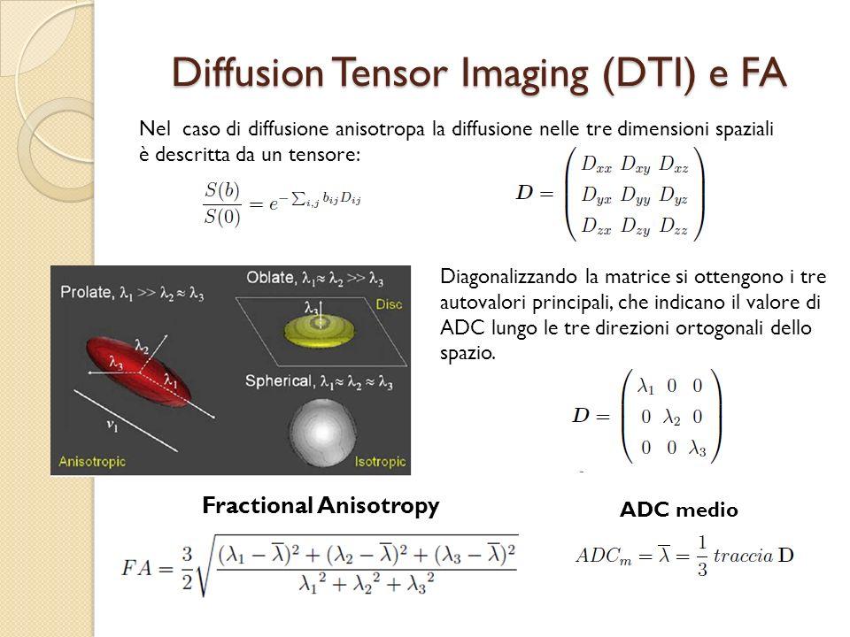 Diffusion Tensor Imaging (DTI) e FA Nel caso di diffusione anisotropa la diffusione nelle tre dimensioni spaziali è descritta da un tensore: Diagonali