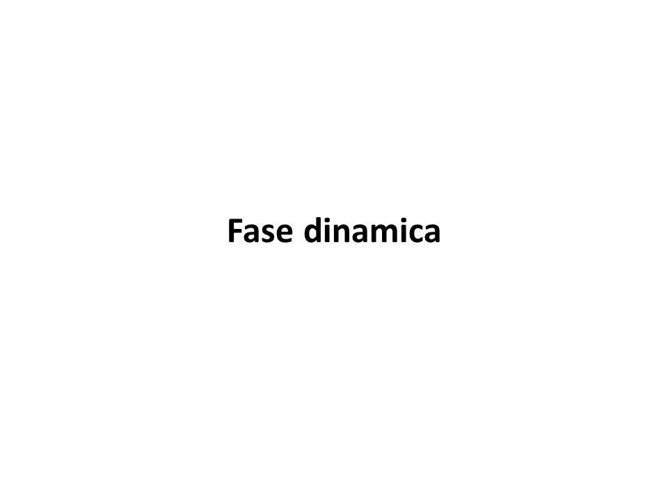 Fase dinamica