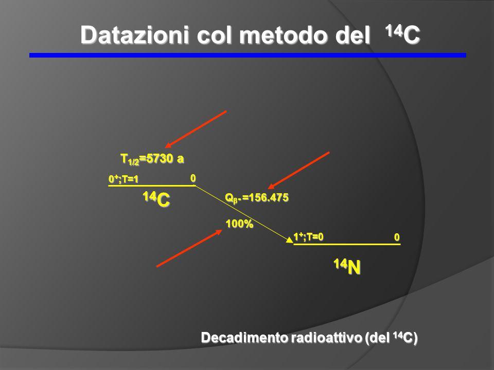 14 C 0 T 1/2 =5730 a 0 + ;T=1 Q - =156.475 100% 14 N 1 + ;T=0 0 Decadimento radioattivo (del 14 C) Datazioni col metodo del 14 C
