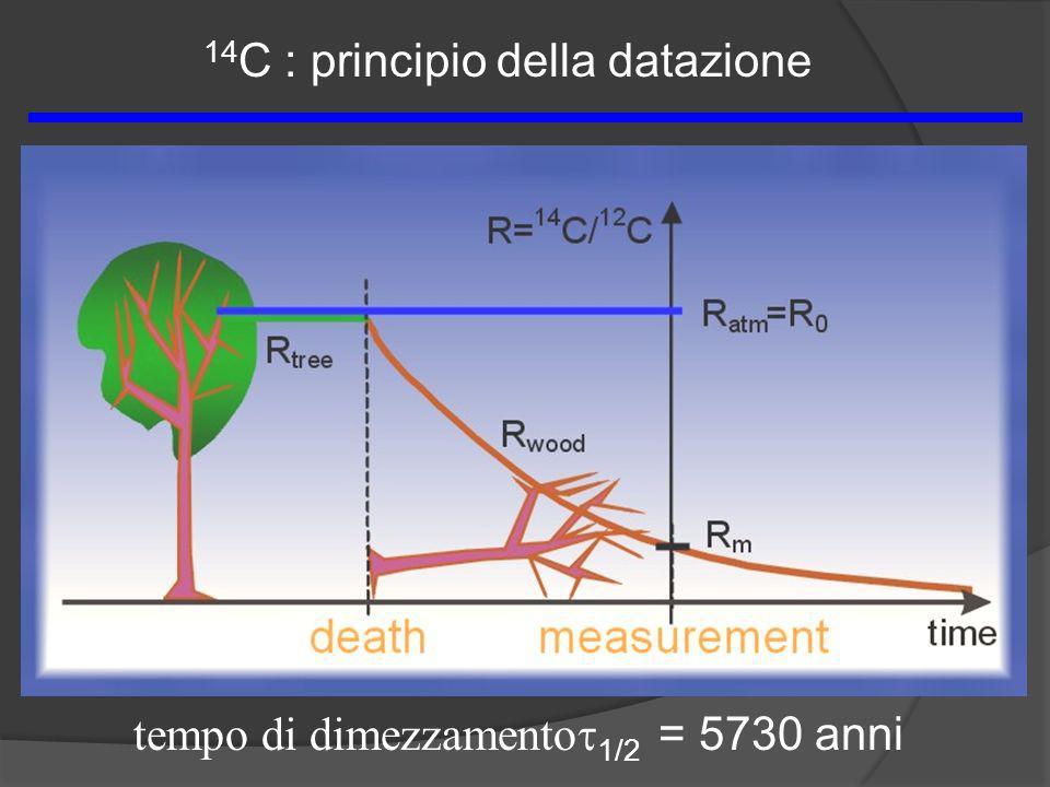 tempo di dimezzamento 1/2 = 5730 anni 14 C : principio della datazione