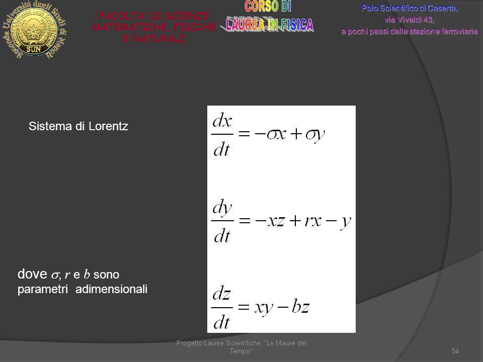 Sistema di Lorentz Progetto Lauree Scientifiche: