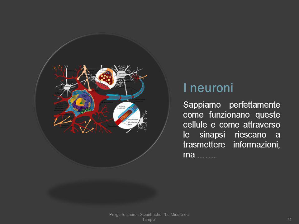 I neuroni Sappiamo perfettamente come funzionano queste cellule e come attraverso le sinapsi riescano a trasmettere informazioni, ma ……. 74 Progetto L