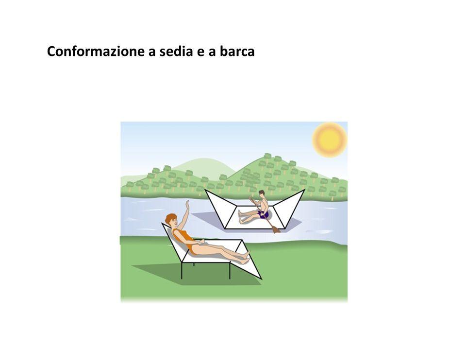 Conformazione a sedia e a barca
