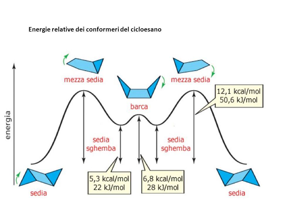 Energie relative dei conformeri del cicloesano
