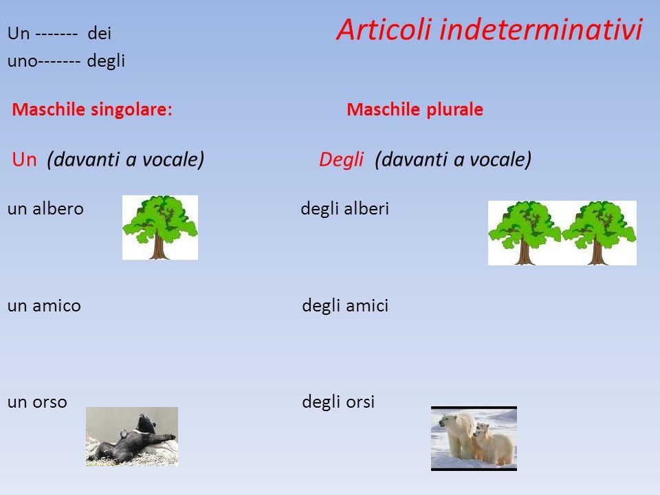 : Un ------- dei Articoli indeterminativi uno------- degli Maschile singolare: Maschile plurale Un (davanti a vocale) Degli (davanti a vocale) un albe