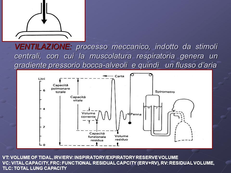 VENTILAZIONE: processo meccanico, indotto da stimoli centrali, con cui la muscolatura respiratoria genera un gradiente pressorio bocca-alveoli e quind