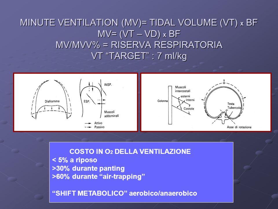 MINUTE VENTILATION (MV)= TIDAL VOLUME (VT) X BF MV= (VT – VD) X BF MV/MVV% = RISERVA RESPIRATORIA VT TARGET : 7 ml/kg COSTO IN O 2 DELLA VENTILAZIONE