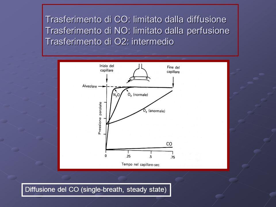 Trasferimento di CO: limitato dalla diffusione Trasferimento di NO: limitato dalla perfusione Trasferimento di O2: intermedio Diffusione del CO (singl